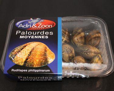 palourdes