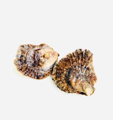 Platte zeeuwse